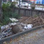 Rubbish bulldozed back into the park Feb 2013