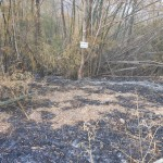 Sri Nan National Park failed firebreak